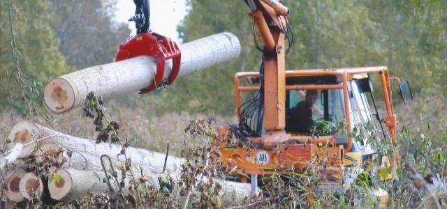 JCB Fastrac 2135 Forestier pour un sylviculteur de l'aube